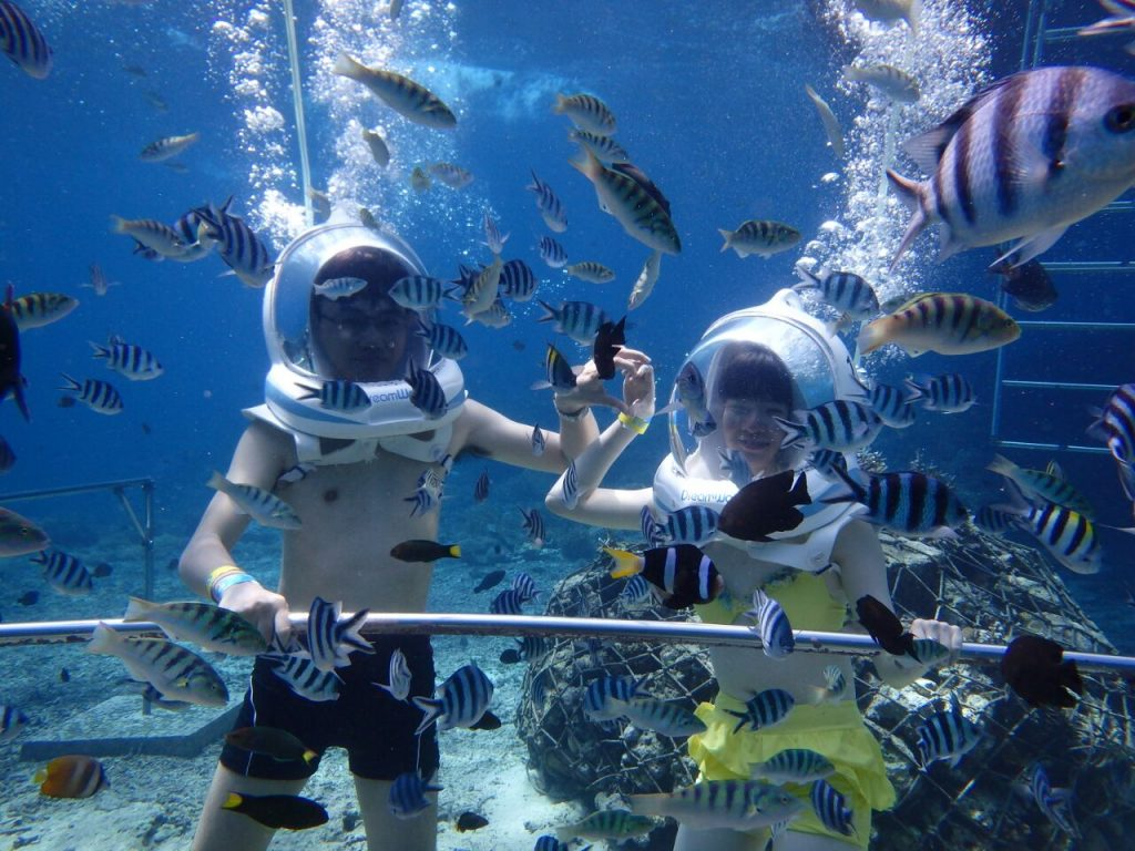 Lembongan Underwater Walk, Massage & Spa with Sunset Dinner at Jimbaran