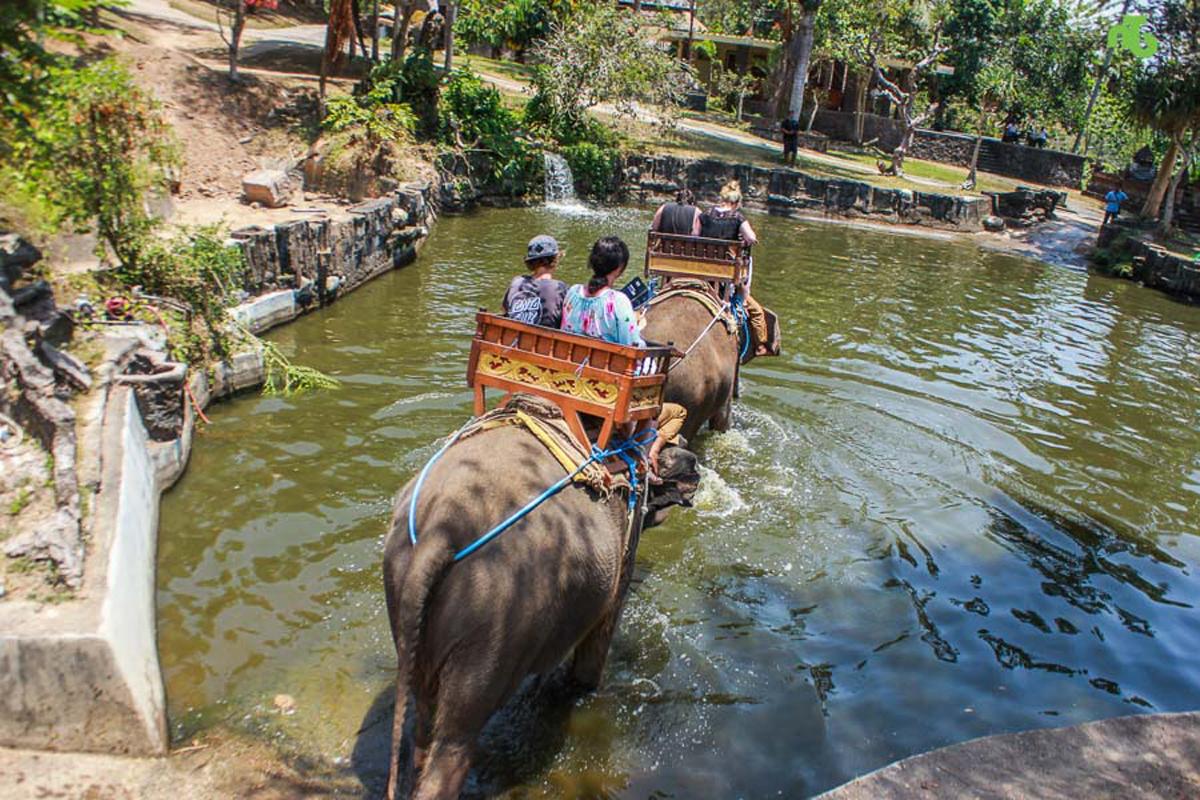 Ubud Tour Itinerary