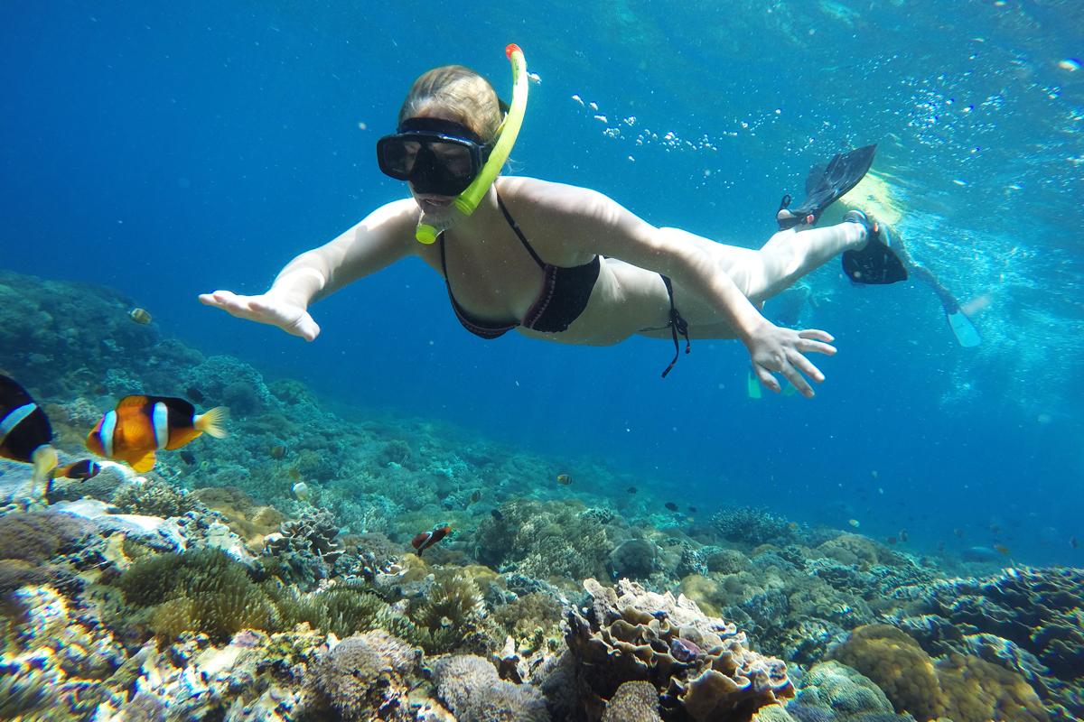 Snorkeling Wallbay Point
