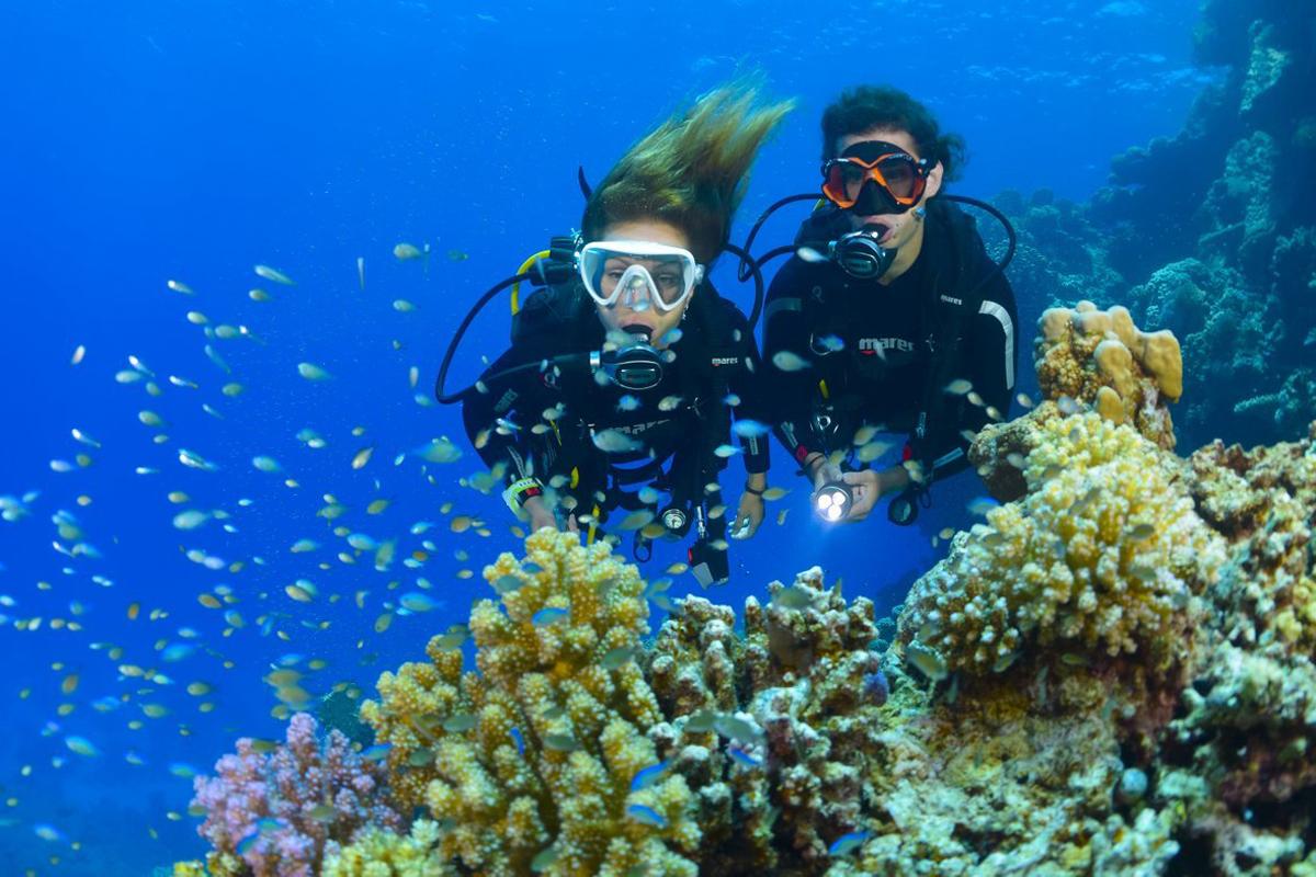 Tulamben Drop Off Reef Point