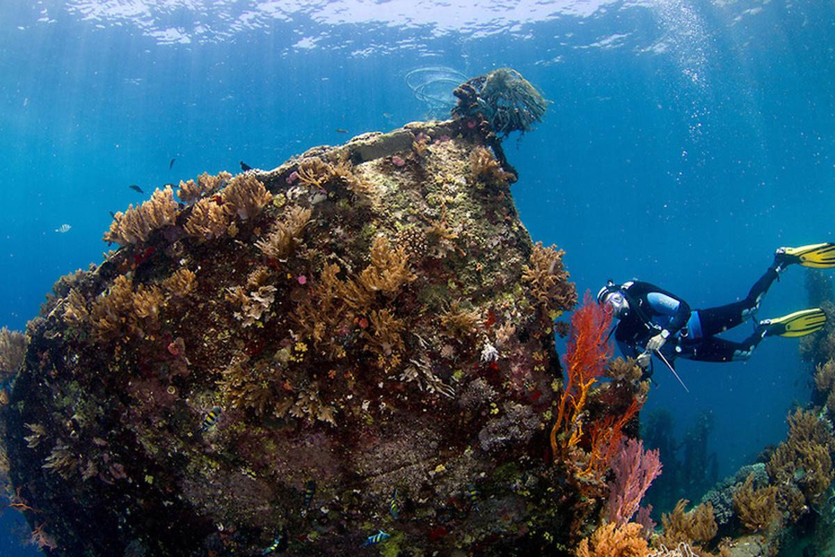 Tulamben USS Liberty Shipwreck Dive