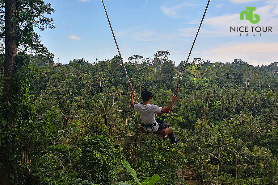 Bali Swing Ubud Tour Package + Bali Waterfall Tour