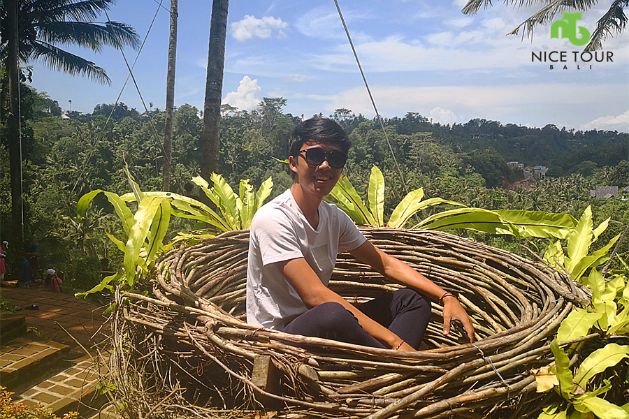 cute nest at bali swing